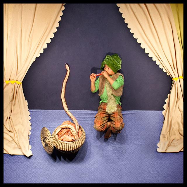 slangen bezweren in het circus